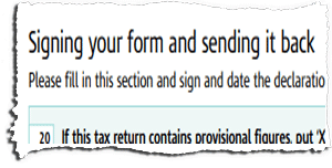 Tax Return Page TR8 Snippet